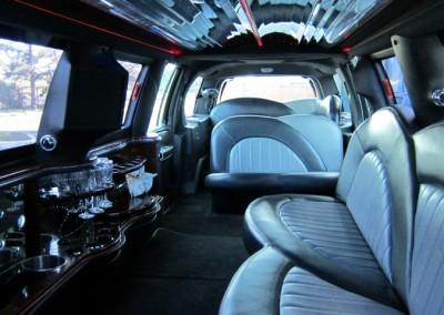 Limousine Services of Niagara (NAV TUC ECB) (10)